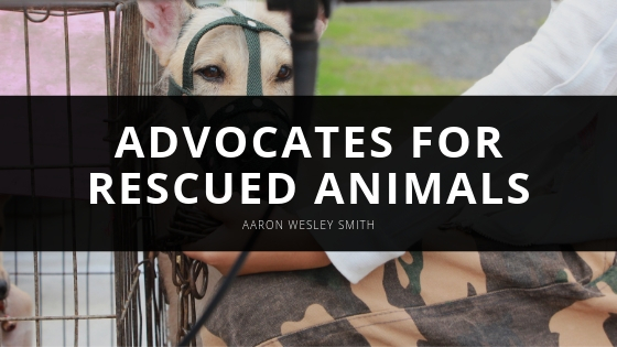 Successful Businessman, Aaron Wesley Smith, Advocates for Rescued Animals