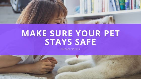 Is Your Home Pet Proofed? Make Sure Your Pet Stays Safe With Tips From Bryan Nazor