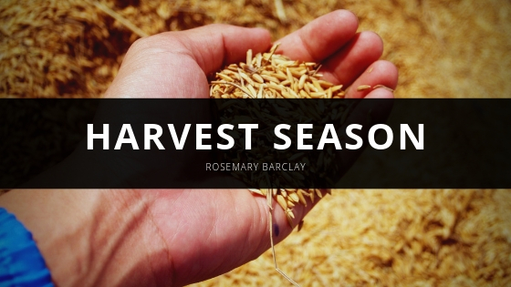 Rosemary Barclay Offers 5 Tips to Eating Well Throughout the Harvest Season