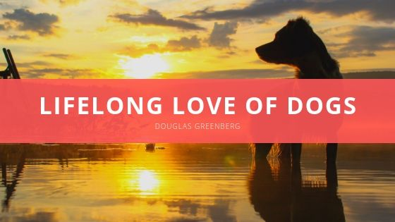 Douglas Greenberg Shares Lifelong Love of Dogs