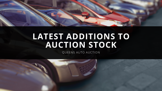 Queens Auto Auction Showcases Latest Additions to Auction Stock