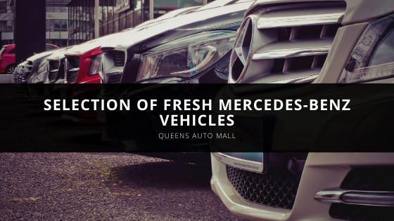Queens Auto Mall Adds Selection of Fresh Mercedes-Benz Vehicles to It'sStock