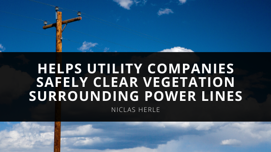 Niclas Herle, Aerial Innovator, Helps Utility Companies Safely Clear Vegetation Surrounding Power Lines