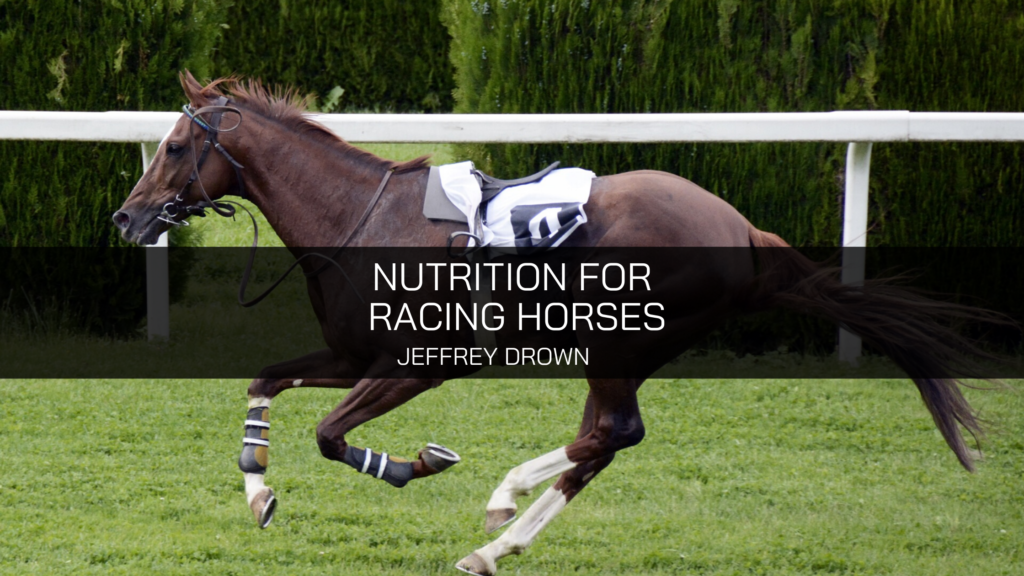 Jeffrey Drown Talks About Nutrition for Racing Horses