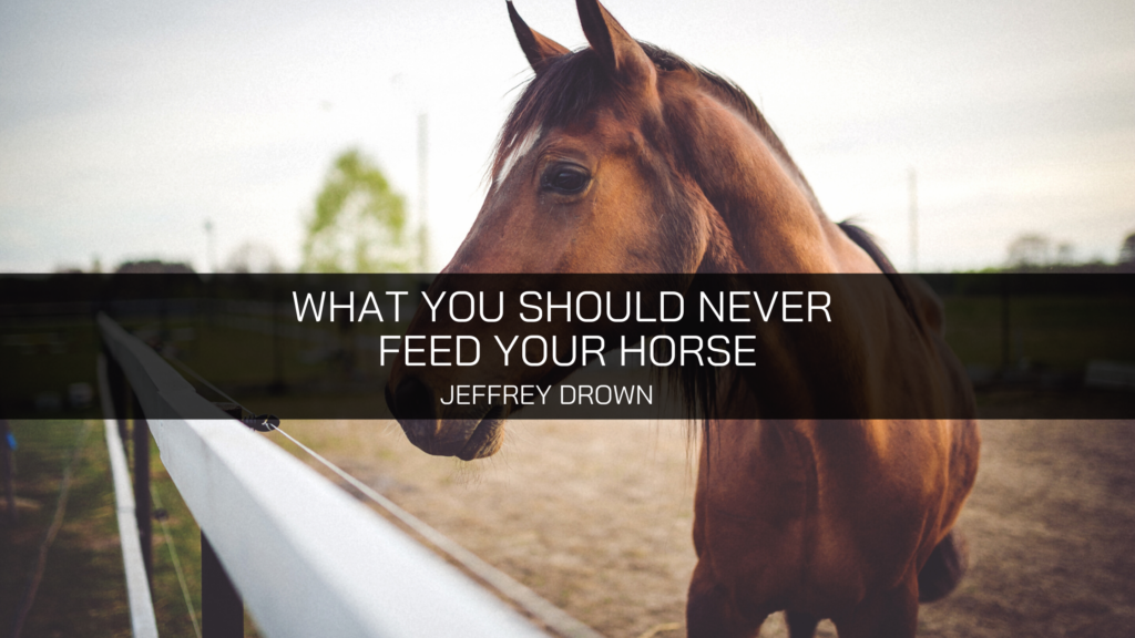 Jeffrey Drown Talks About What He Never Feeds His Horse